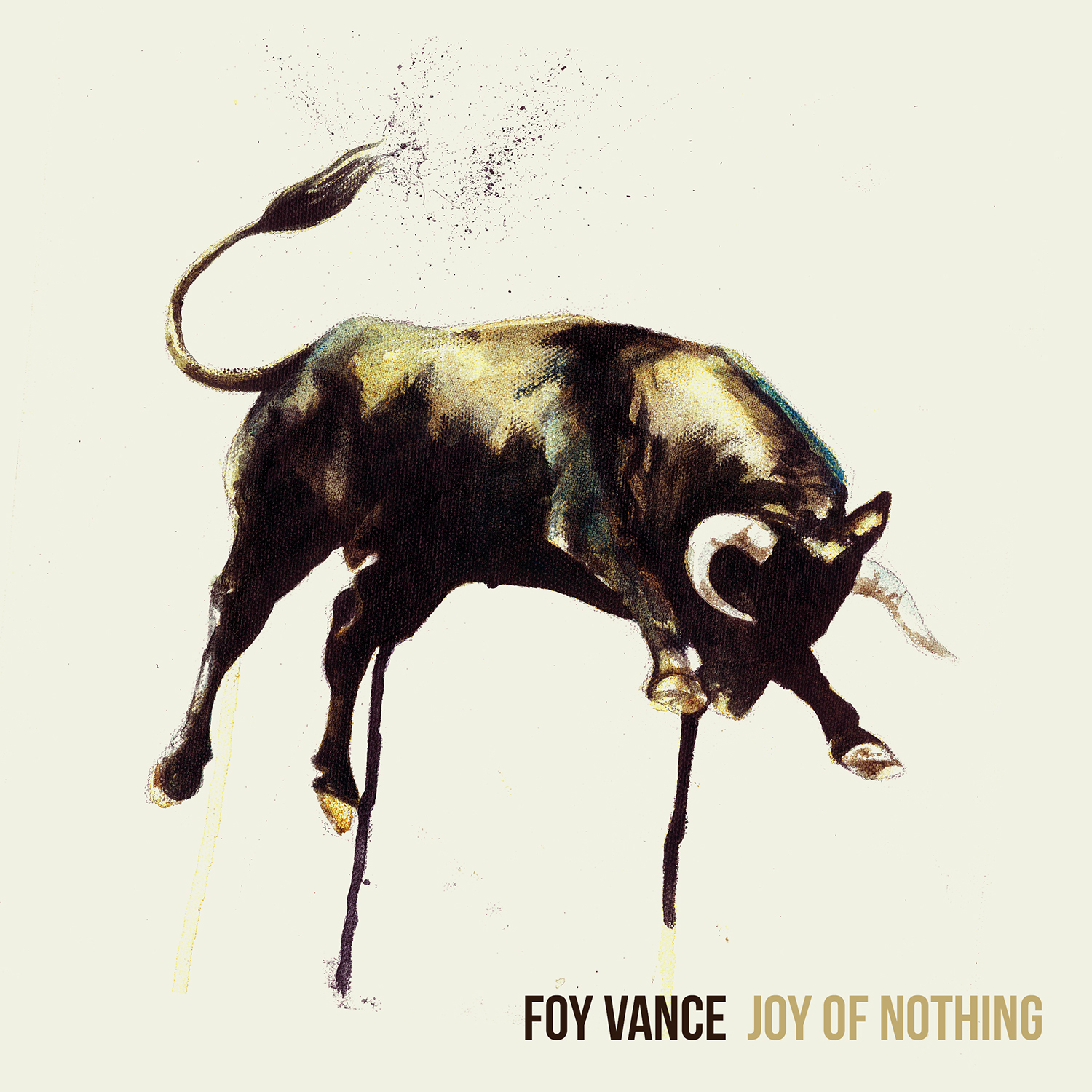 Foy Vance_Joy Of Nothing