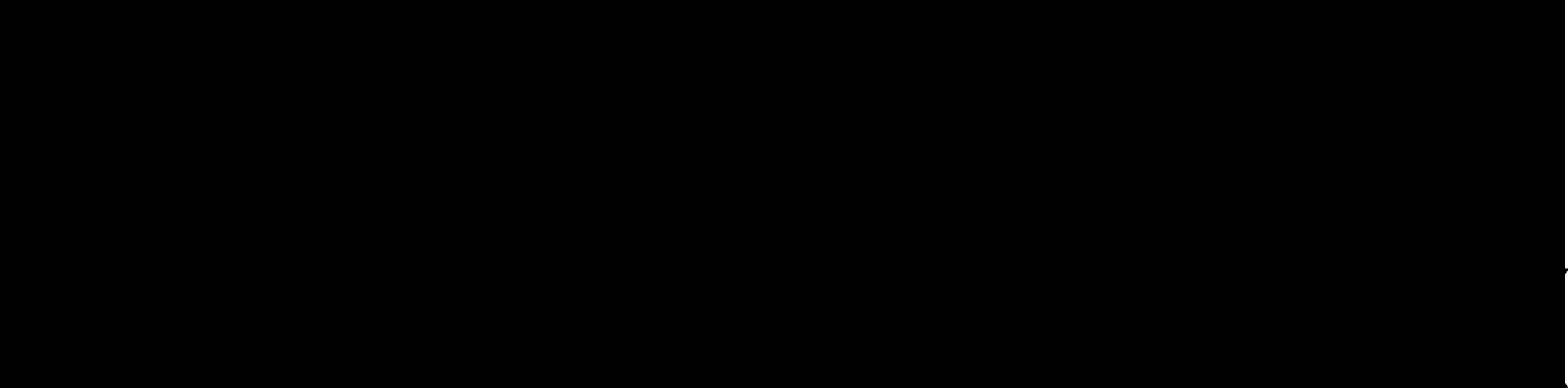 hurricane-logo-neu-schwarz-2014