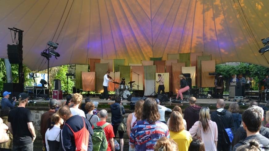 Selvhenter, live at By The Lake Festival 2016 (3), (c) Dörte Heilewelt